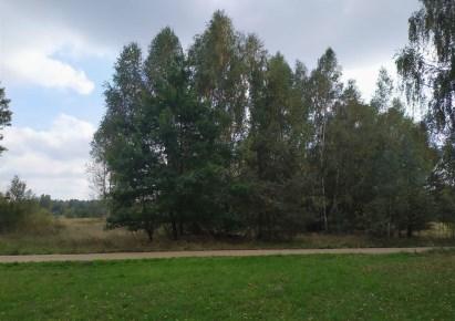 działka na sprzedaż - Łochów, Twarogi